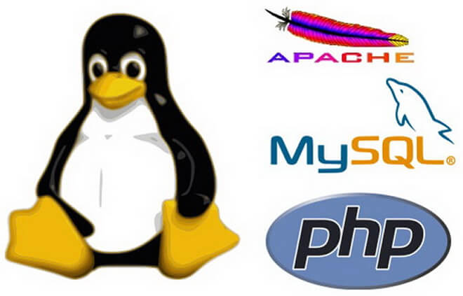 Choosing The Right Linux Distro For Your LAMP VPS